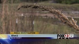 VIDEO: Dead trees still yet to be replanted