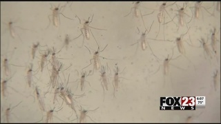 Tulsa County mosquito testing begins earlier than normal
