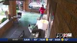 VIDEO: Man reportedly catches package thief on video while on vacation in Mexico