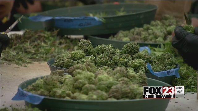 Oklahoma marijuana law changes | FOX23