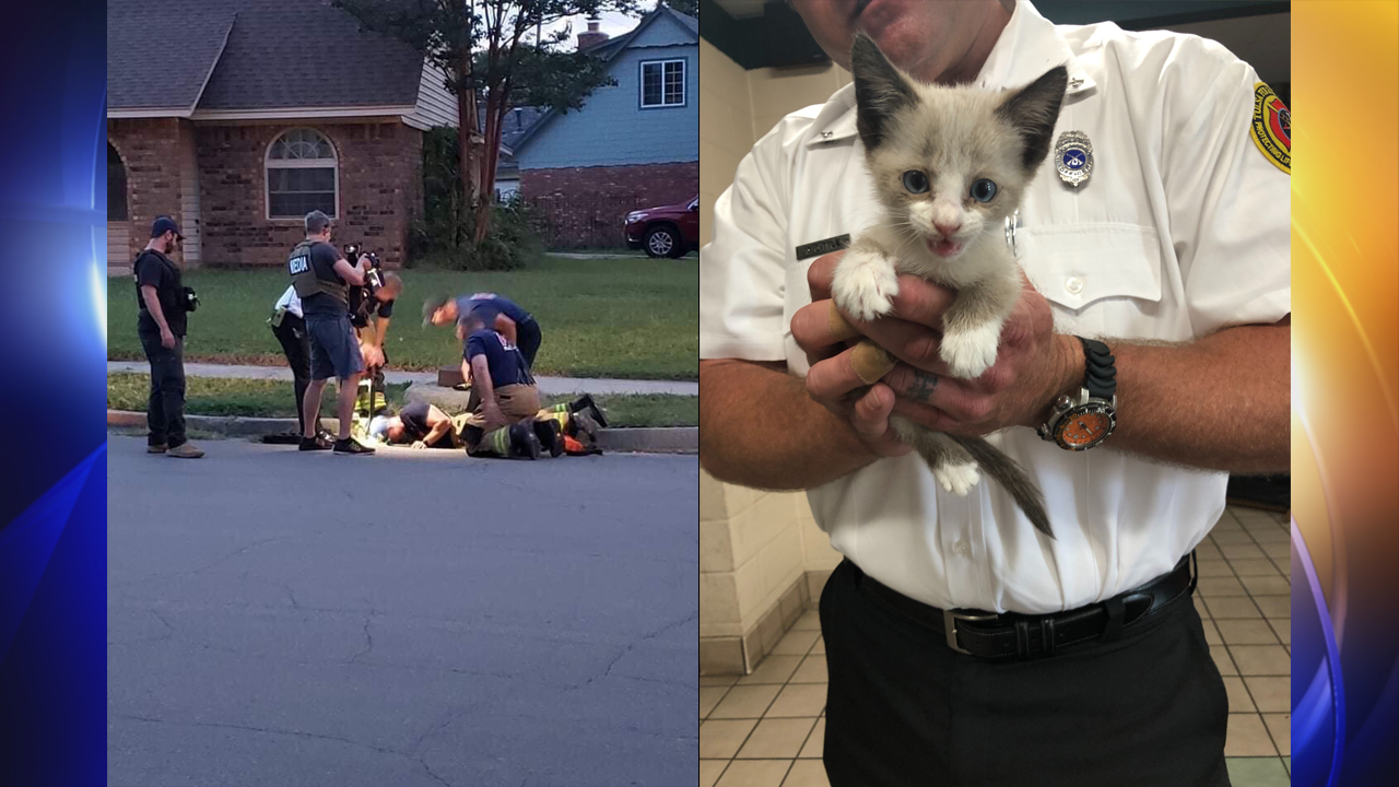 CAT RESCUE: Tulsa Firefighters Save Kitten From Storm Drain