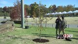 OKC Memorial survivor tree planted at the Gathering Place