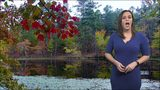 #FOX23Foliage: Where to see fall colors in Oklahoma (11/14)